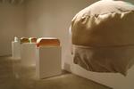 Installation Shot 1 by Liz Nurenberg
