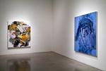 Jane Liu MFA Thesis Exhibition by Jane Liu