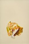 Tiger stripe skirt by Alex C. Moore