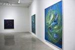 Joshua Didline installation by Joshua Dildine