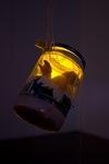 Babydoll Arms Lantern