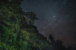 The night sky above 'Kilometre 15' -  a protest site and blockade against the Baram Dam in Borneo, Malaysia