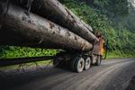 A logging truck passes 'Kilometre 15' -  a protest site and blockade against the Baram Dam in Borneo, Malaysia