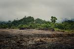 Along a logging road throuugh the jungles of Borneo, Malaysia