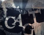 #01 CAGT